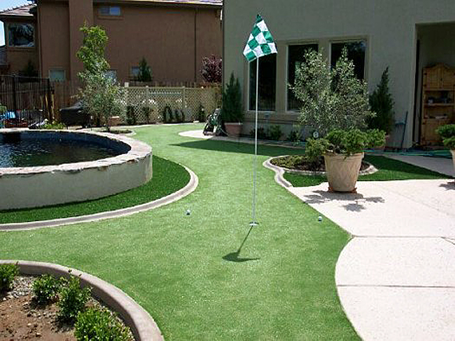 Charmant Artificial Grass Atlanta