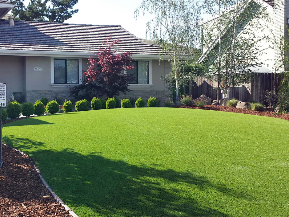 Grass Turf Centerville Georgia Roof Top Landscaping Ideas For Front Yard