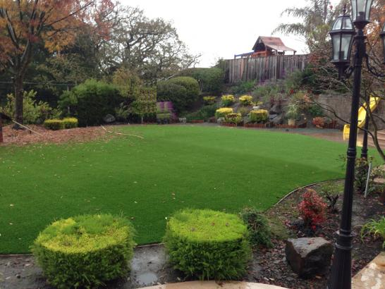 Artificial Grass Photos: Artificial Grass Carpet Reed Creek, Georgia Design Ideas, Backyard Garden Ideas