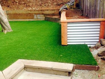 Artificial Grass Photos: Artificial Grass Installation Lakeview, Georgia Landscape Ideas, Backyard Designs