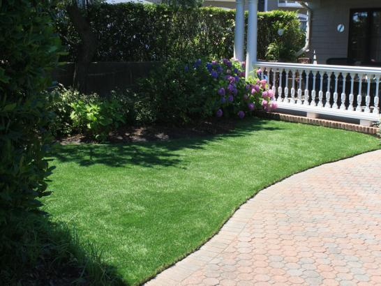 Artificial Grass Photos: Artificial Grass Trion, Georgia Dog Grass, Small Front Yard Landscaping