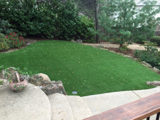 Artificial Grass Photos: Artificial Lawn Colbert, Georgia City Landscape, Backyard Designs