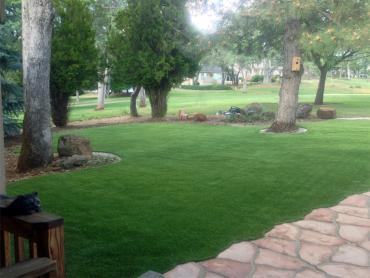 Artificial Grass Photos: Artificial Lawn Pineview, Georgia Lawn And Garden, Front Yard