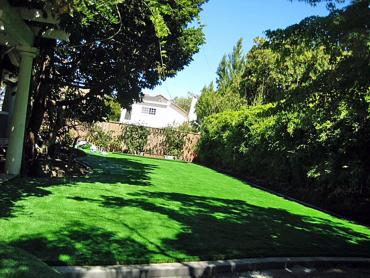 Artificial Grass Photos: Artificial Turf Broxton, Georgia City Landscape, Backyard Ideas