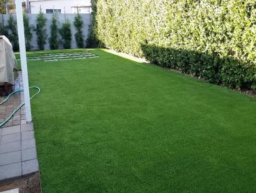 Artificial Grass Photos: Artificial Turf Cost Broxton, Georgia Artificial Grass For Dogs, Backyard Landscape Ideas