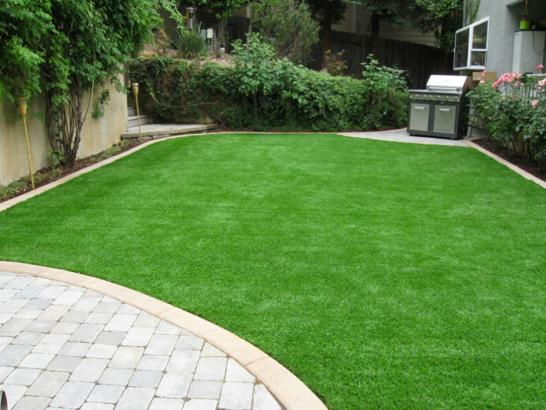 Artificial Grass Photos: Artificial Turf Cost Glennville, Georgia Home And Garden