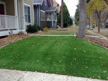 Artificial Grass Photos: Artificial Turf Cost Martinez, Georgia Landscaping, Front Yard Landscaping