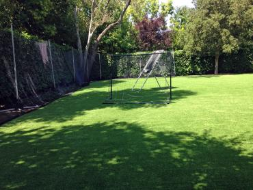 Artificial Grass Photos: Artificial Turf Cost Saint Simons, Georgia Lawn And Landscape, Backyard Garden Ideas