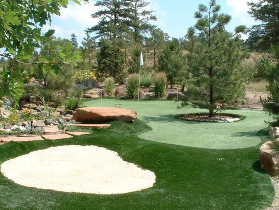 Artificial Turf Cost Trion, Georgia Landscape Rock, Backyard artificial grass