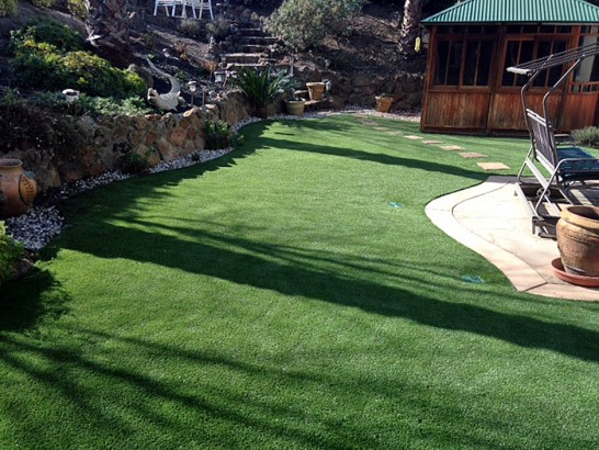 Artificial Grass Photos: Artificial Turf Grantville, Georgia Backyard Playground, Backyard Ideas