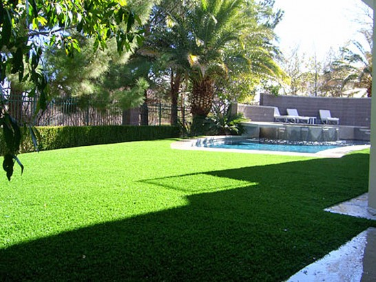 Artificial Grass Photos: Artificial Turf Helen, Georgia Lawns, Beautiful Backyards