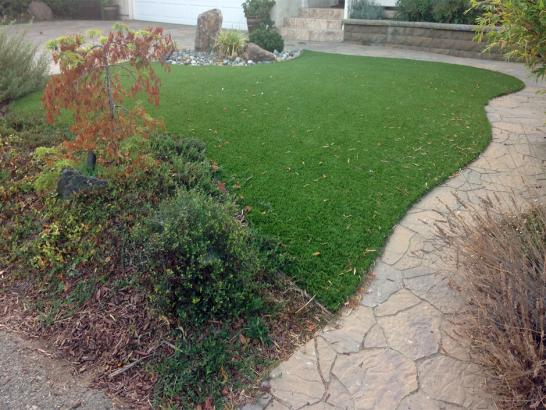 Artificial Grass Photos: Artificial Turf Homeland, Georgia Watch Dogs, Beautiful Backyards