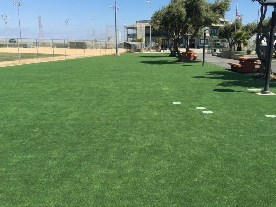 Artificial Turf Installation Dexter, Georgia Landscape Ideas, Recreational Areas artificial grass
