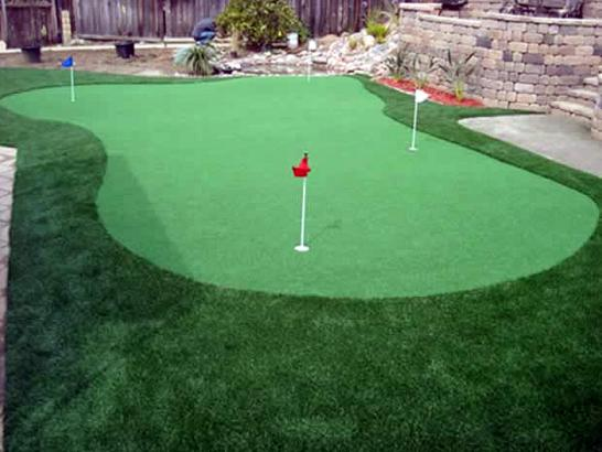 Artificial Grass Photos: Artificial Turf Installation Palmetto, Georgia Backyard Deck Ideas, Backyard Design
