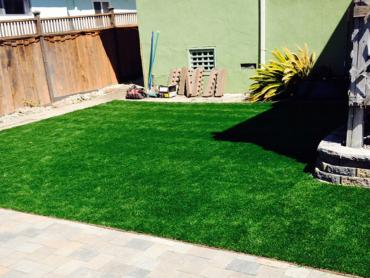 Artificial Grass Photos: Artificial Turf Installation Robins Air Force Base, Georgia Cat Grass, Small Backyard Ideas