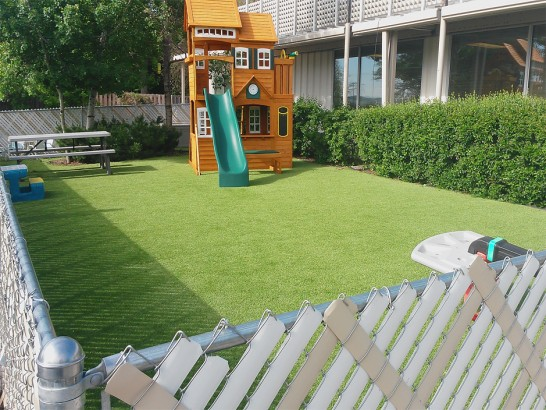 Artificial Grass Photos: Best Artificial Grass Clermont, Georgia Backyard Deck Ideas, Backyard Landscape Ideas