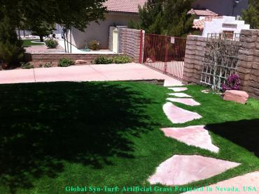 Artificial Grass Photos: Best Artificial Grass Montezuma, Georgia Landscaping Business, Small Front Yard Landscaping