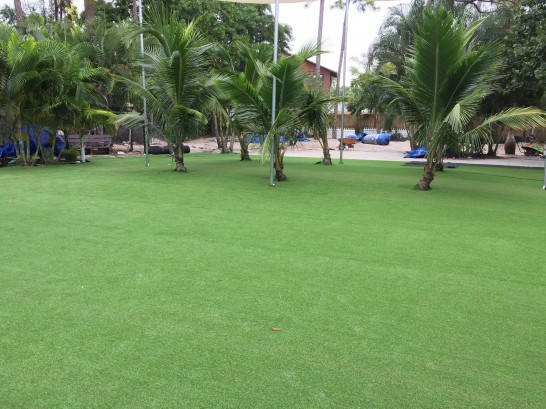 Artificial Grass Photos: Best Artificial Grass Tennille, Georgia Rooftop, Commercial Landscape