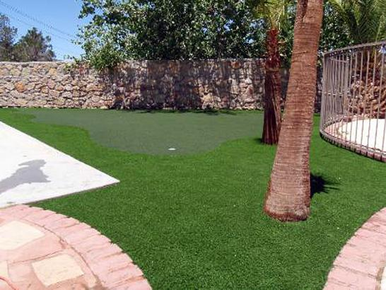 Best Artificial Grass Tybee Island, Georgia Backyard Playground, Backyard Designs artificial grass
