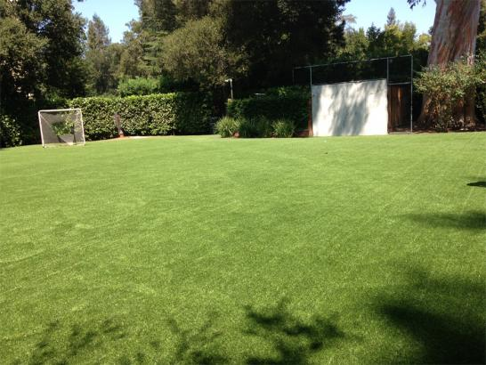 Artificial Grass Photos: Fake Grass Carpet Mount Zion, Georgia Eco Friendly Products, Backyard Designs