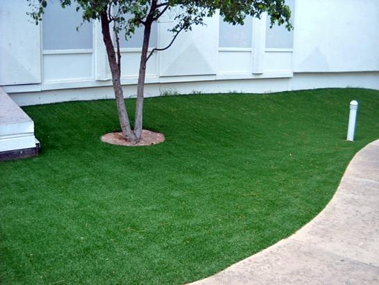 Artificial Grass Photos: Fake Lawn Bibb City, Georgia Landscaping, Commercial Landscape