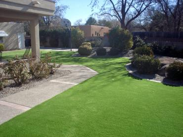 Artificial Grass Photos: Fake Lawn Putney, Georgia Landscaping, Front Yard