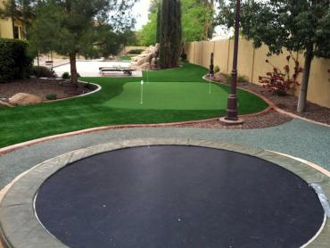 Artificial Grass Photos: Fake Lawn Sardis, Georgia Office Putting Green, Backyard Makeover