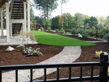 Artificial Grass Photos: Fake Lawn Uvalda, Georgia Landscape Ideas, Backyard Landscaping
