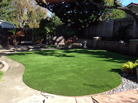 Artificial Grass Photos: Fake Turf Arcade, Georgia Lawns, Beautiful Backyards