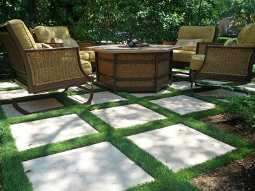 Artificial Grass Photos: Fake Turf Edison, Georgia Landscape Photos, Pavers