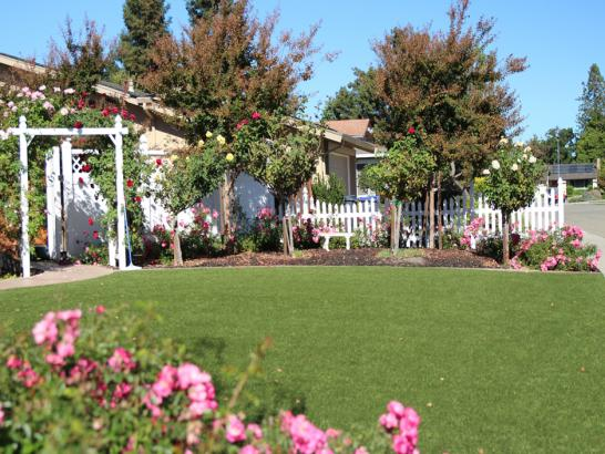 Artificial Grass Photos: Grass Installation Chattanooga Valley, Georgia Roof Top, Small Front Yard Landscaping