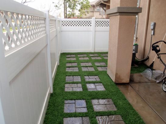 Artificial Grass Photos: Grass Turf Luthersville, Georgia Backyard Deck Ideas, Pavers