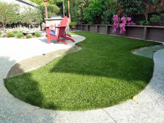 Artificial Grass Photos: Grass Turf Roberta, Georgia Garden Ideas, Backyard Garden Ideas