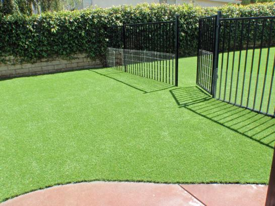 Artificial Grass Photos: Installing Artificial Grass Waleska, Georgia Dog Run, Front Yard Ideas