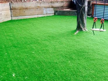Artificial Grass Photos: Installing Artificial Grass Young Harris, Georgia Landscape Rock, Backyard Landscaping Ideas