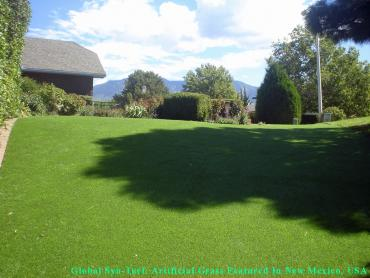 Artificial Grass Photos: Lawn Services Bibb City, Georgia Indoor Dog Park, Backyard Garden Ideas