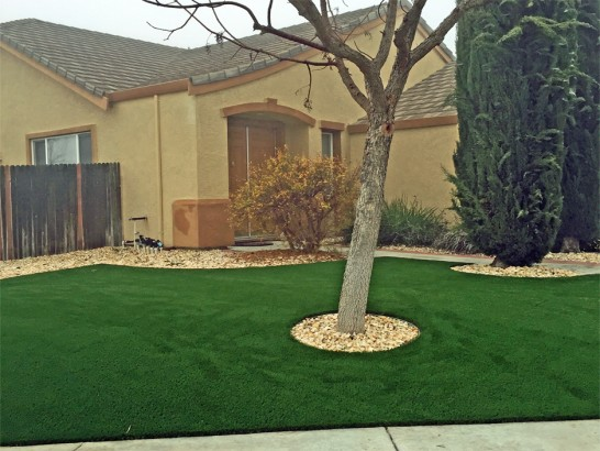 Lawn Services Lyerly, Georgia Lawn And Garden, Front Yard Design artificial grass