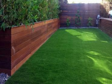 Artificial Grass Photos: Lawn Services Pelham, Georgia Gardeners, Beautiful Backyards