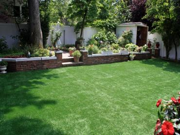 Artificial Grass Photos: Lawn Services Ray City, Georgia Design Ideas, Backyard Landscaping Ideas