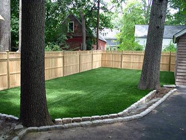 Artificial Grass Photos: Lawn Services Warner Robins, Georgia Dog Hospital, Beautiful Backyards