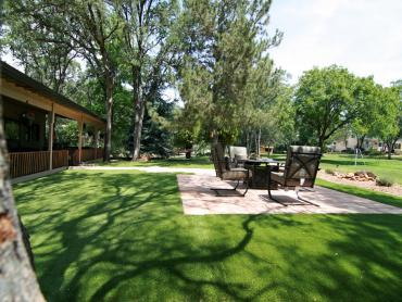 Artificial Grass Photos: Outdoor Carpet Alapaha, Georgia Landscape Ideas, Backyard Garden Ideas