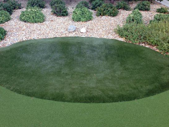 Artificial Grass Photos: Outdoor Carpet Eton, Georgia City Landscape