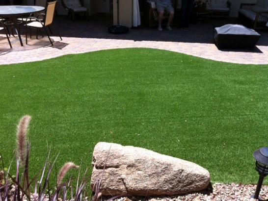 Artificial Grass Photos: Outdoor Carpet Mount Airy, Georgia Cat Playground, Beautiful Backyards