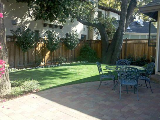 Artificial Grass Photos: Outdoor Carpet Phillipsburg, Georgia, Beautiful Backyards