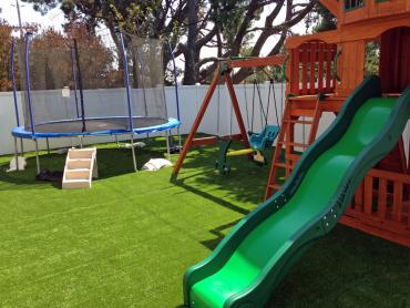 Artificial Grass Photos: Outdoor Carpet Pineview, Georgia Backyard Deck Ideas, Beautiful Backyards