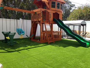 Artificial Grass Photos: Plastic Grass Lumber City, Georgia Backyard Playground, Backyard