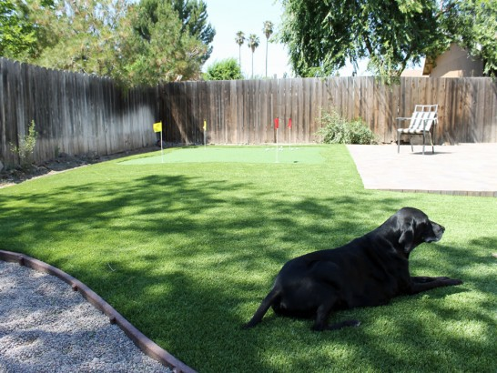 Artificial Grass Photos: Synthetic Grass Baldwin, Georgia Artificial Grass For Dogs, Dogs