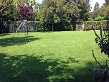 Artificial Grass Photos: Synthetic Grass Cost Byromville, Georgia Backyard Sports, Backyard Garden Ideas