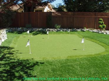 Artificial Grass Photos: Synthetic Grass Cost Fort Oglethorpe, Georgia Paver Patio, Backyard Design