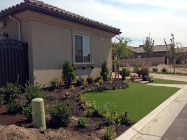 Artificial Grass Photos: Synthetic Grass Cost Kings Bay Base, Georgia Rooftop, Front Yard Landscape Ideas
